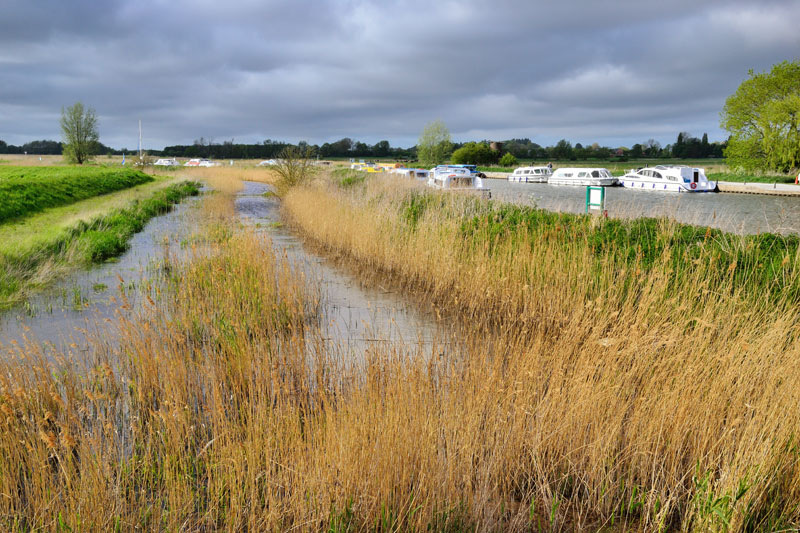 Soke Dyke on Horning Marshes at Ludham Bridge