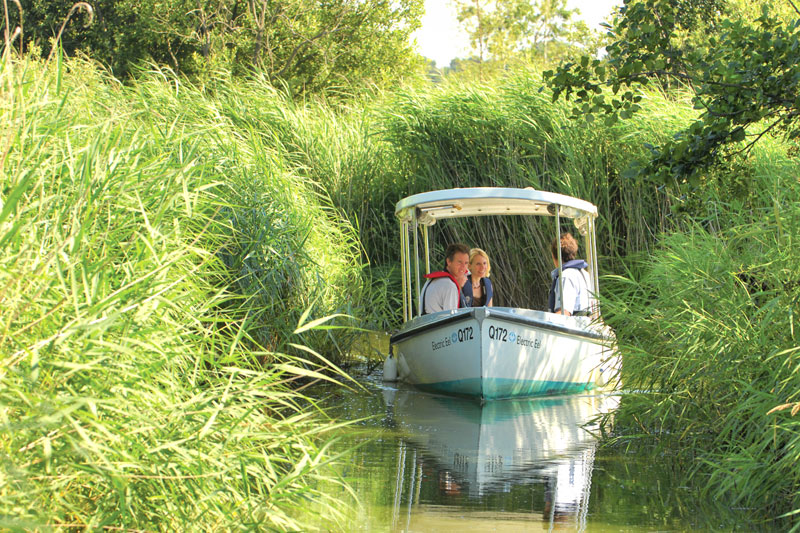 The Electric Eel Trip Boat Exploring the Marshes