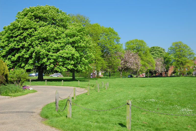 Stokesby Village Green